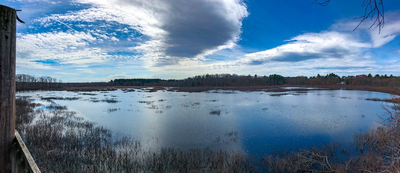Ipswich Wildlife Sanctuary, Ipswich MA
