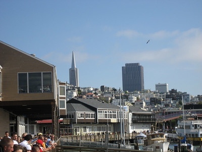 TransAmerica Pyramid from Pier 39