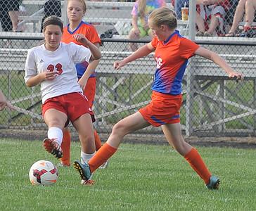 Freshman's two goals give Firelands lift