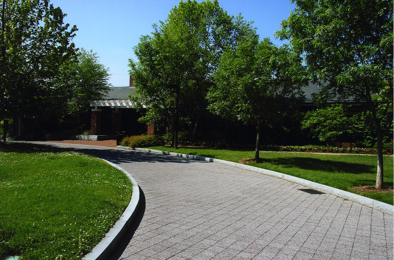 007 Woodsland grounds.jpg.JPG