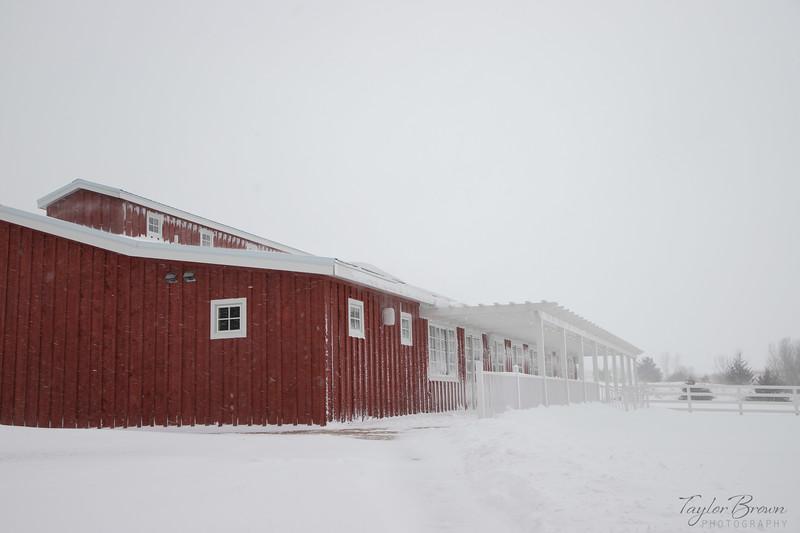 Almquist Farm-12.jpg