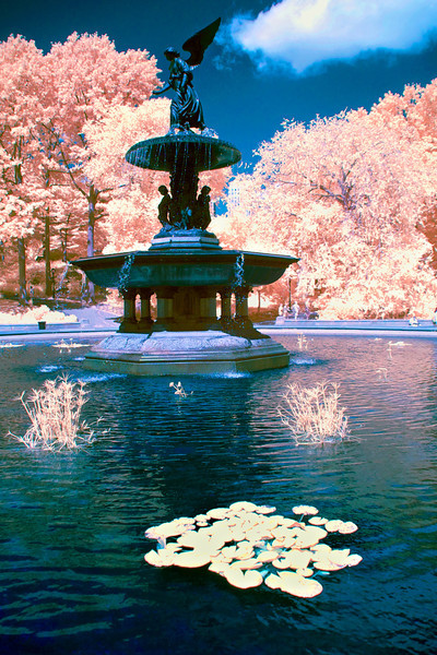 bethesda-fountain-color-infrared.jpg