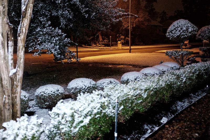 blizzard 2017-4113.jpg