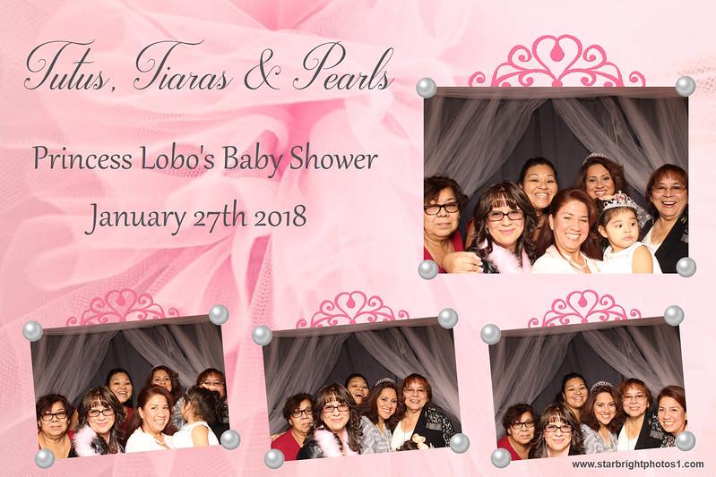 Lobo Baby Shower_16.jpg