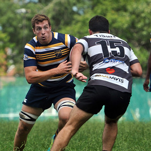 2019 Rugby