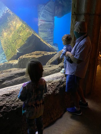 20201110 Long Island Aquarium