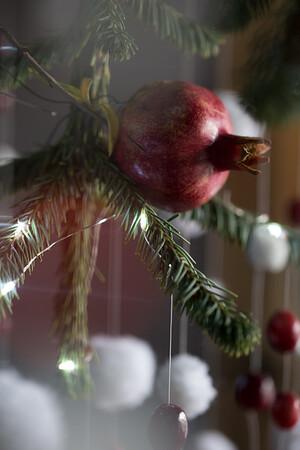 Christmas Tree - 11/18/14