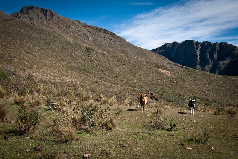 Tarija 201205 Valle de Los Condores (17).jpg