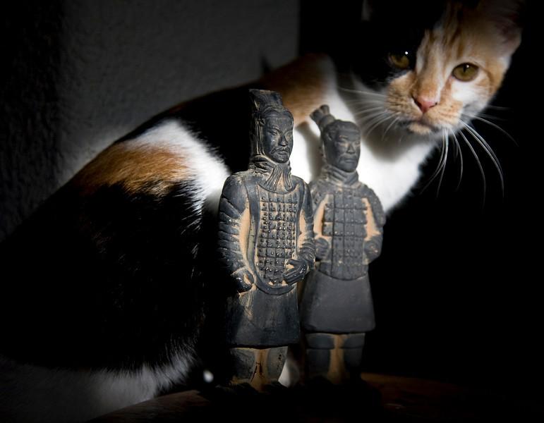terracotta.jpg