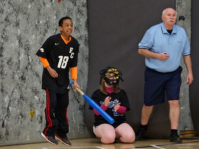 BV-FRM-LV Adapted Softball
