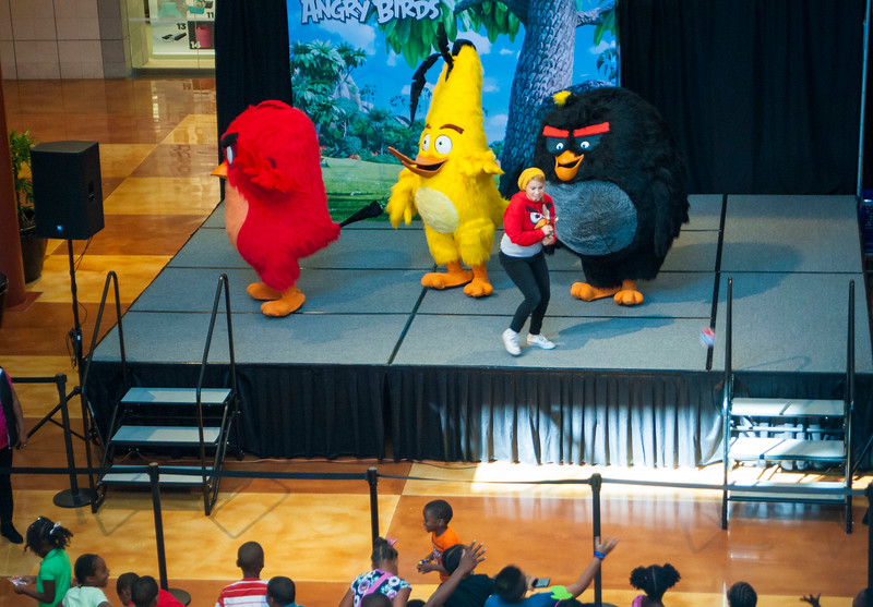 Angry Birds StoneCrest Mall 187.jpg