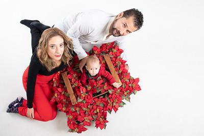 Navidad de flores