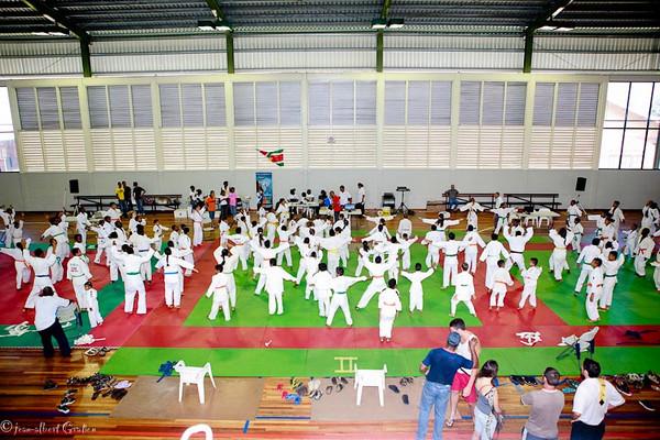 Tournoi du Surinam 2011