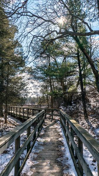 Ontario-Grand-Bend-Pinery-Provincial-Park-51.jpg