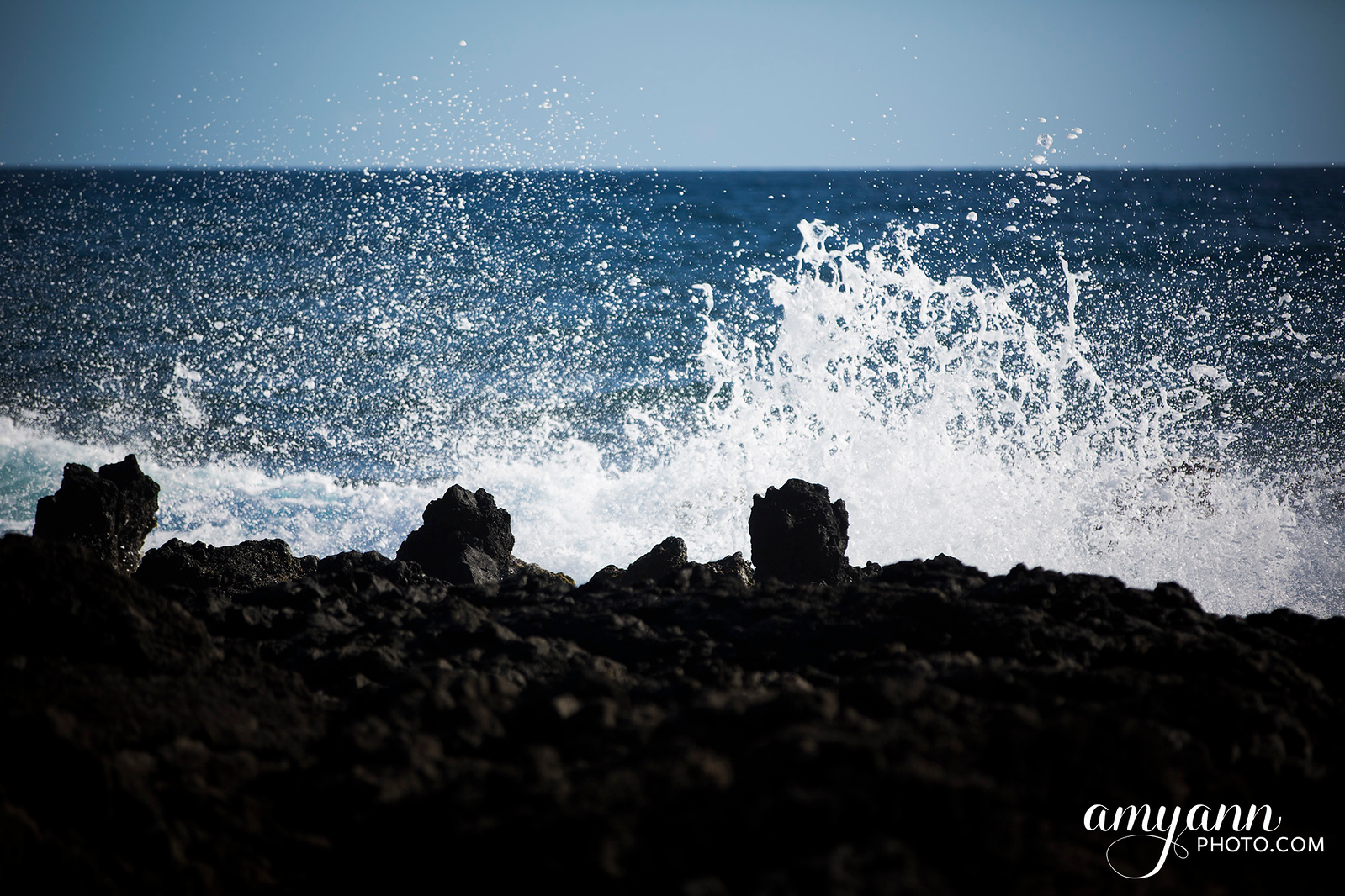 hawaii_amyannphoto_27