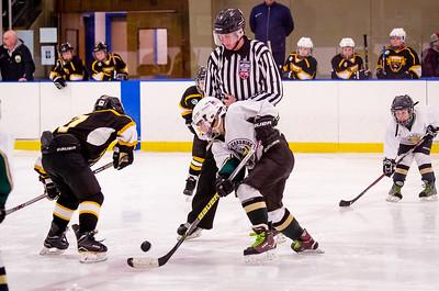 Game 20 - Berkshire Bruins @ Northern Berkshire - 10U