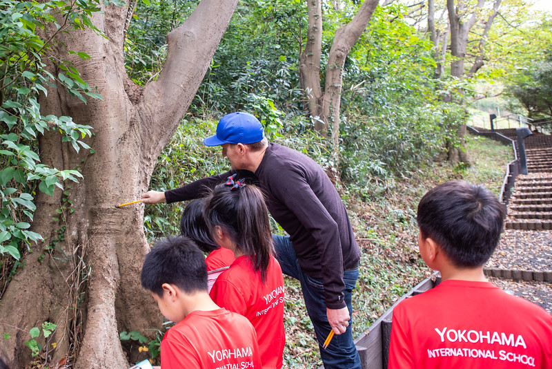 Grade 4-Negishi Park - Nature Observation-ELP_2829-2018-19.jpg