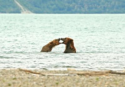 Alaska July 2014