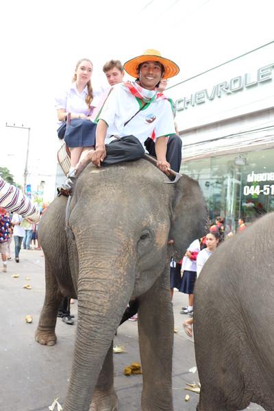 2014-11-14 Surin Elephant Welcome Feast 368.JPG