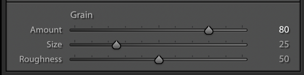 Adding a large Amount of Grain - Effect Panel Settings