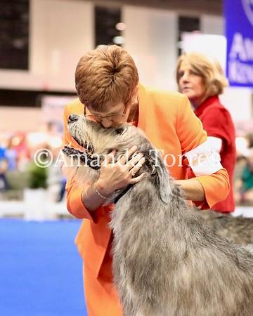 Wolfhound RC Week