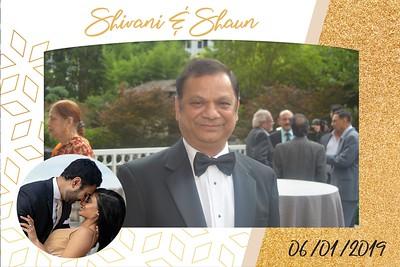 Shivani & Shaun's Wedding Reception