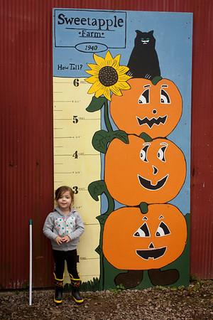10-2013 Little Blessing Preschool at Sweetapple Farm