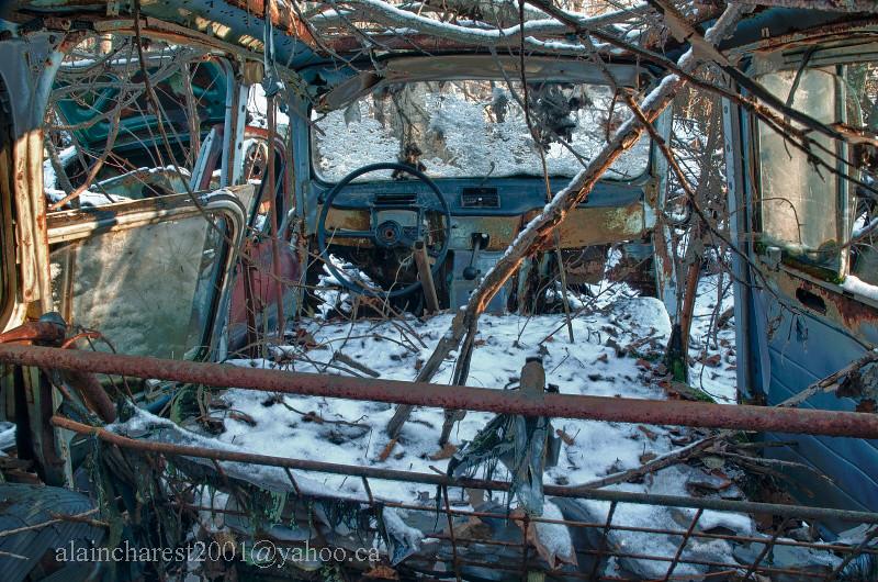 Renault 4 dans le champ