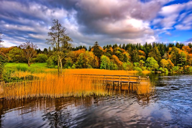 Reeds at Ashford lg.jpg