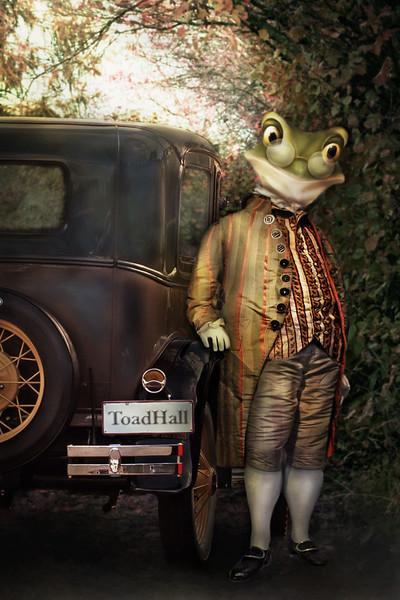 Mr Toad2.jpg
