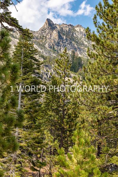 San Fran_Lake Tahoe Trip 2017-1326-71.jpg