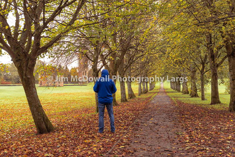 Tree Covered Woodland Walk with castle Ruins and a person i blue in the foreground