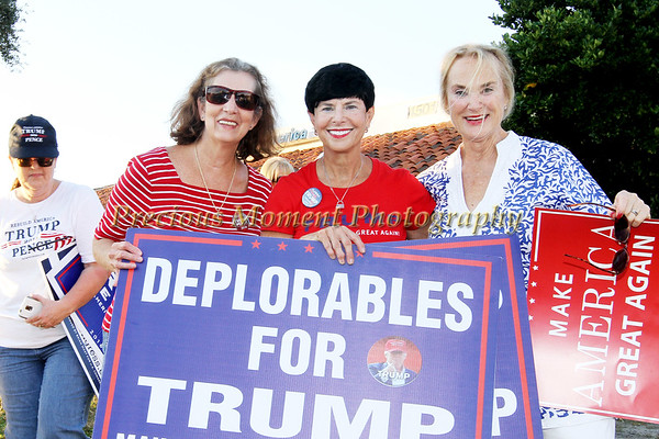 TRUMP SIGN WAVING PICTURES - November 4th, 2016