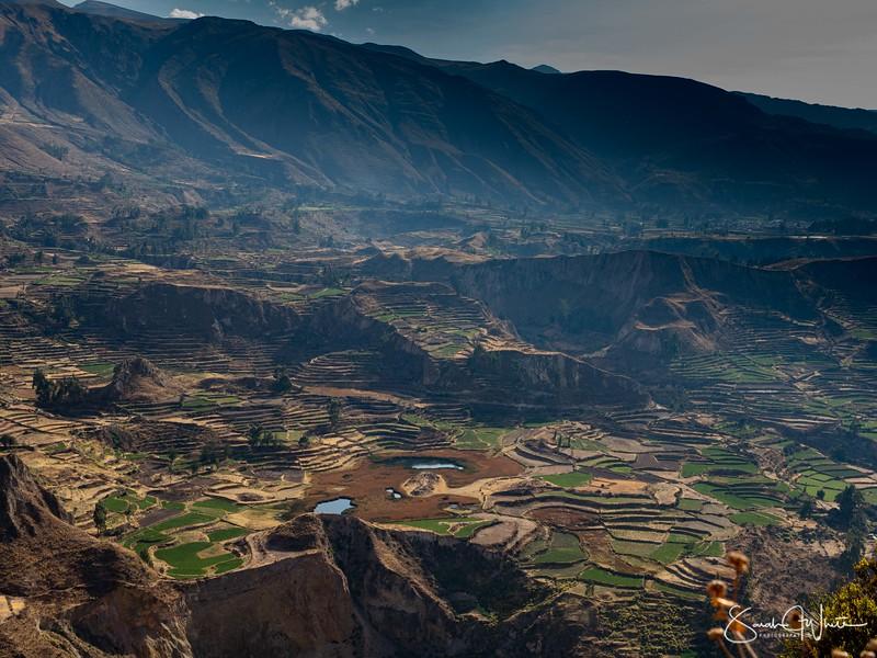Peru-15102019-337.jpg
