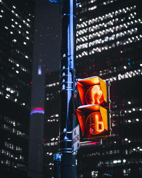 TorontotheSix.jpg