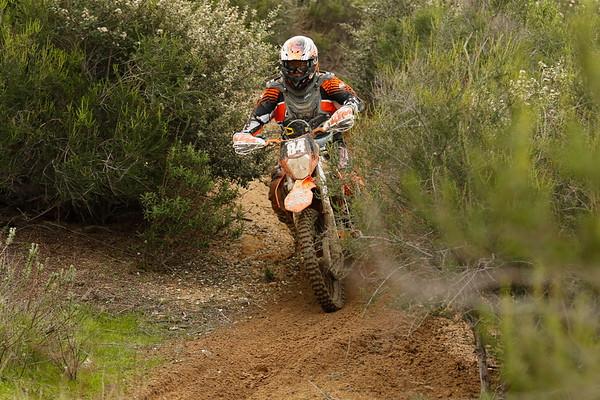 Rider 84
