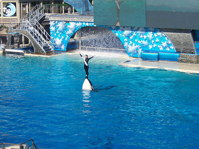 Seaworld - Dec 17, 2007