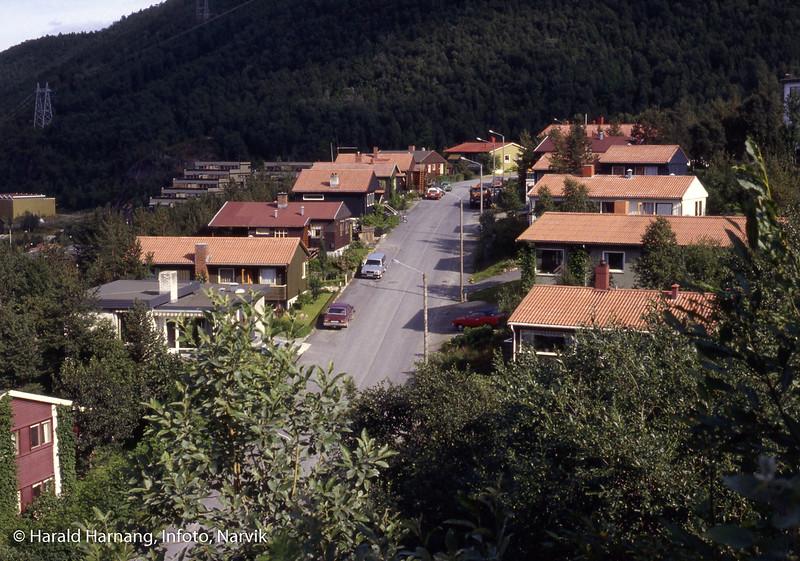 Gaupeveien i Fossestu-området