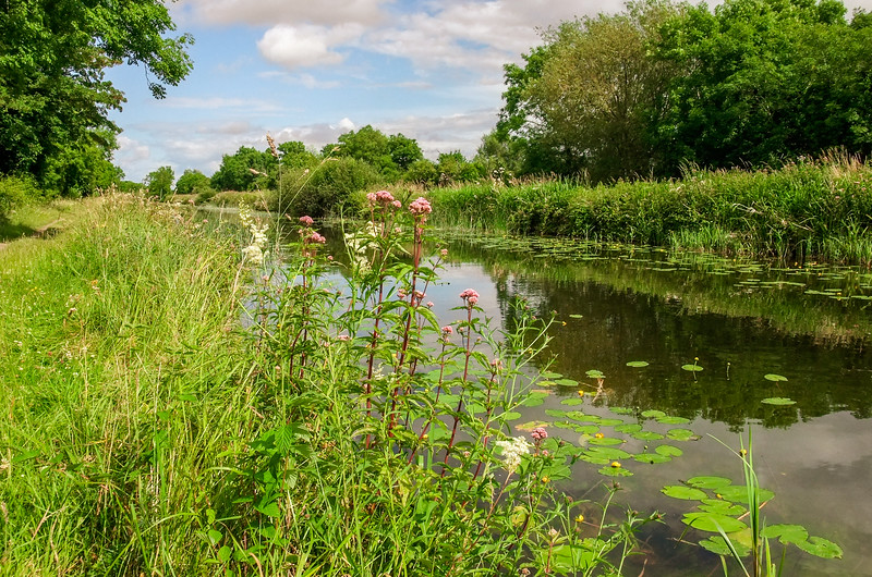 Royal Canal towpath at Leixlip
