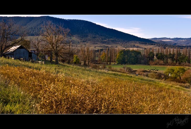 Tarana Landscape in Autumn