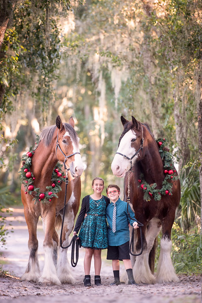 Clydesdales Oct 2019 - Campbell