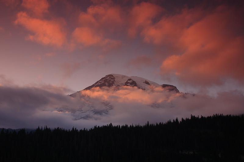 Mt. Rainier 31.JPG