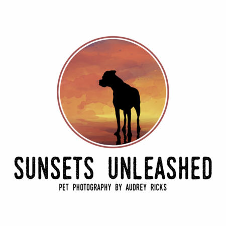 Sunsets Unleashed Pet Photography logo