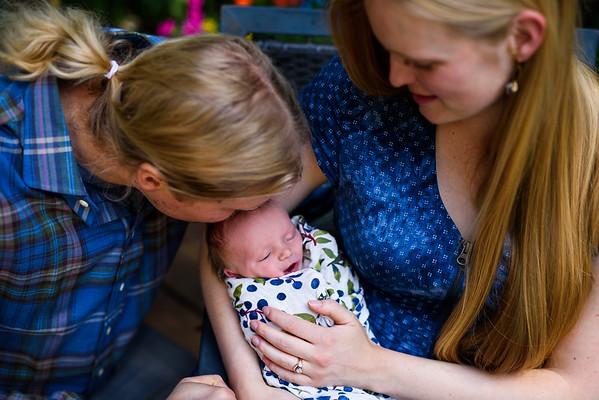 Brynn Newborn