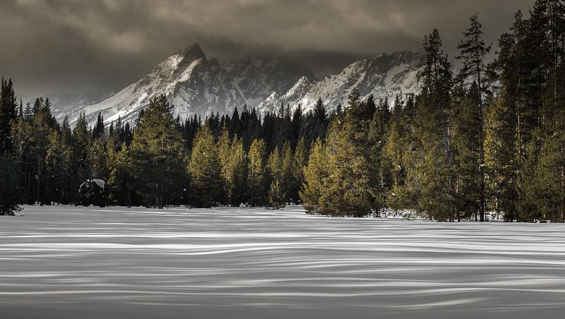 2018 Wyoming Wildlife Magazine Contest Honorable Mention