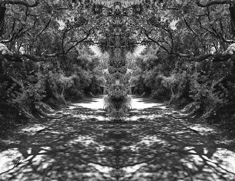 9801-Edit-Edit.jpg