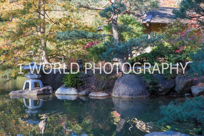 Anderson Japanese Gardens9009.jpg