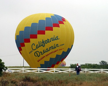 Classic Hot Air Balloons