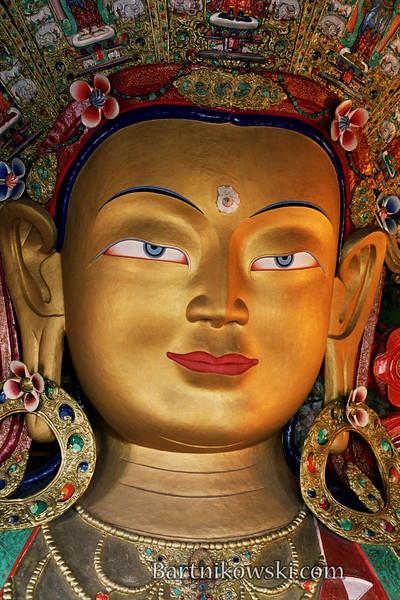 buddhathikseycloseupRoll003019.jpg