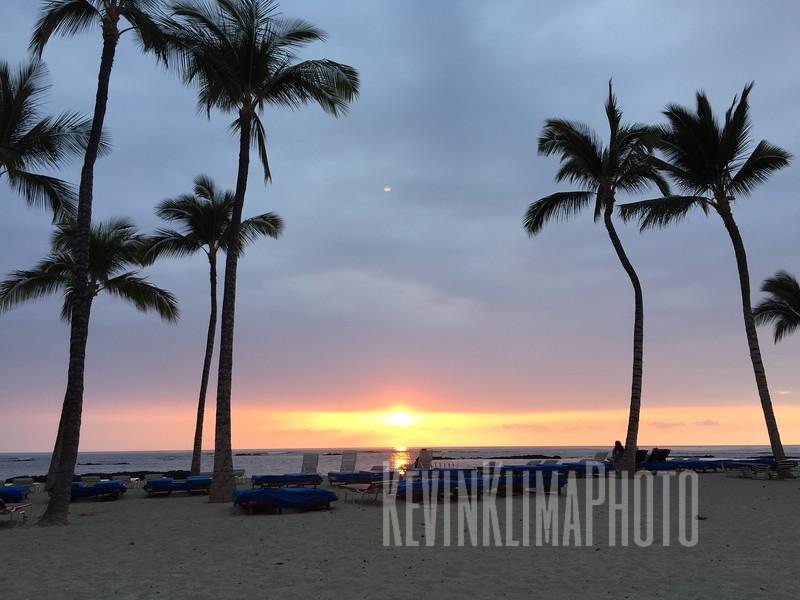 HawaiiPhonePics-66.JPG